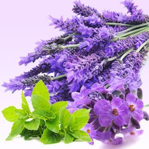 Lavender Mint Medium Candle -