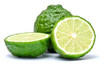 Bergamot Bliss Fragrance Oil