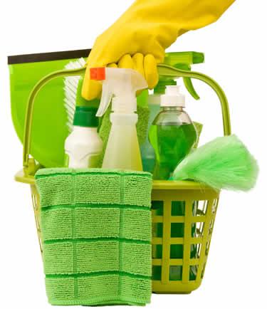 Cheat 'N' Clean Fragrance Oil