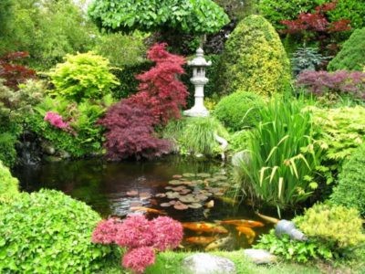 Water Garden Fragrance Oil