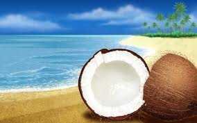 Coconut Beach Elegance Candles