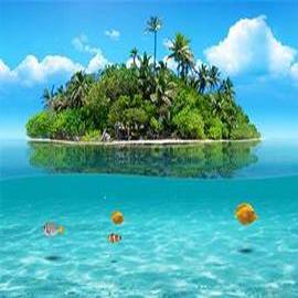 Tropical Retreat Wax Tarts
