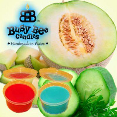 Cucumber Melon Wax Tart Melt