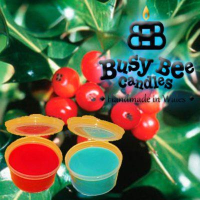 Hollyberry Wax Tart Melt