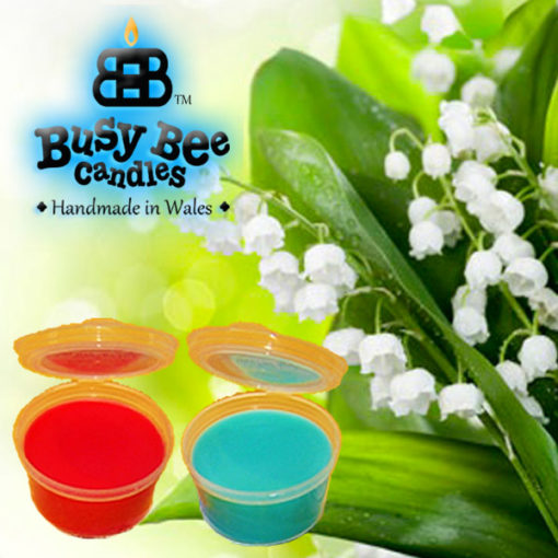 Lily Of The Valley Wax Tart Melt