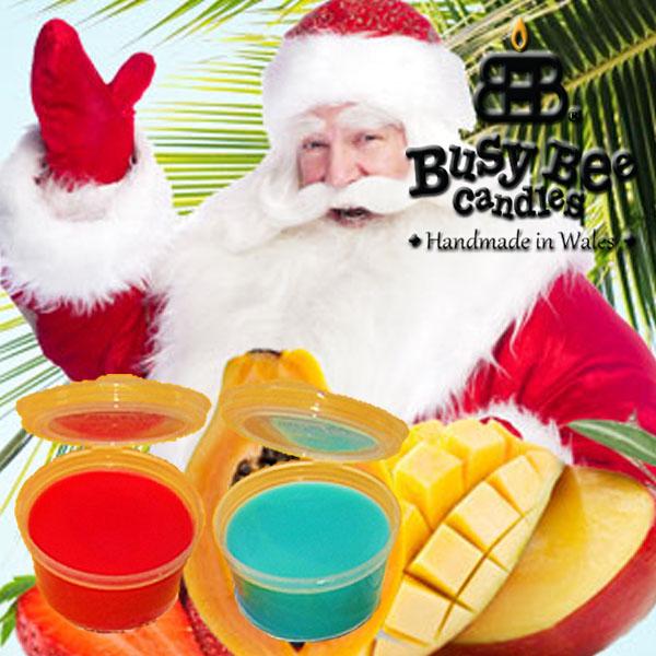 Caribbean Christmas Wax Tart