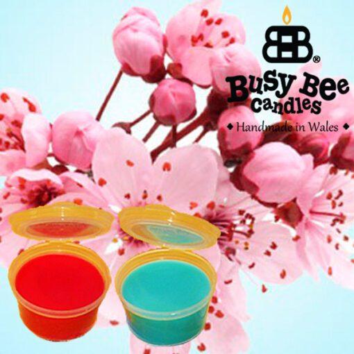 Cherry Blossom Wax Tart