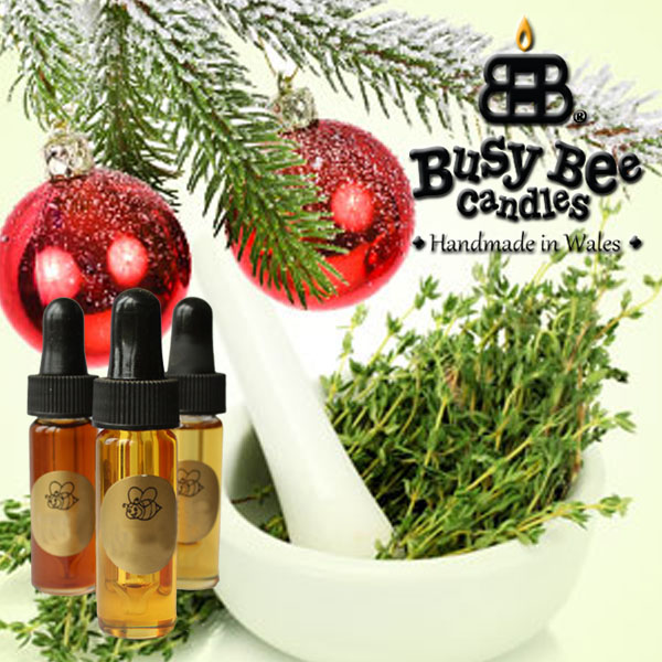 Christmas Thyme Fragrance Oil