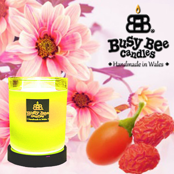 Perfect Daisy Magik Candle