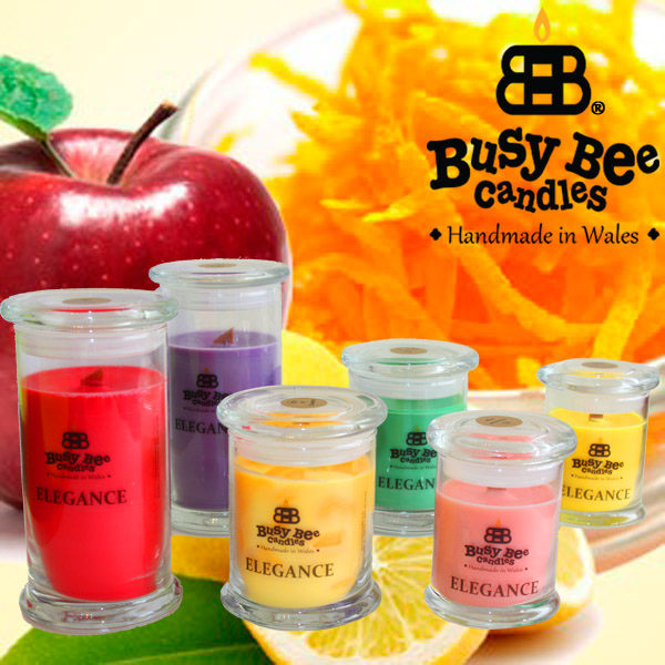 Spiced And Candied Elegance Scented Candles