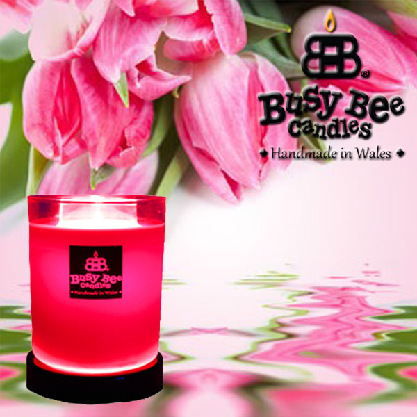 Tulips Magik Candle