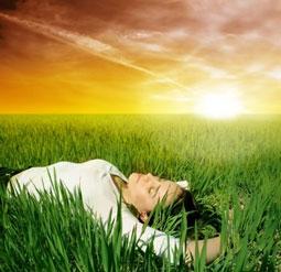 Restful Sleep Tea Light
