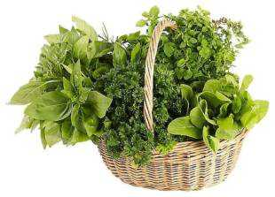 Herb Garden Wax Tarts