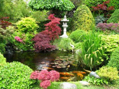 Water Garden Wax Tarts