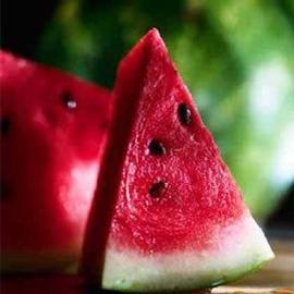 Watermelon Explosion Wax Tarts