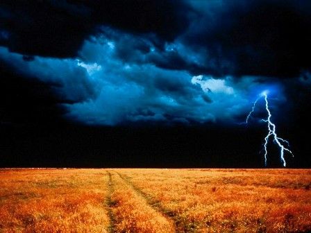 Perfect Storm Magik Beanz