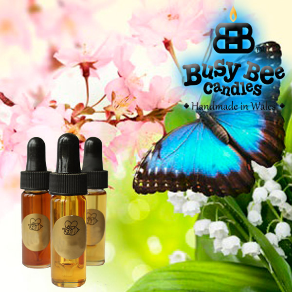 Butterfly Hugs Fragrance Oil