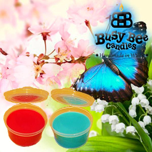 Butterfly Hugs Wax Tart Melt