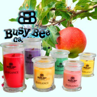 Apple Orchard Medium Elegance Candle