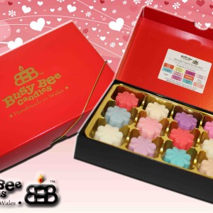 Romance Wax Melt Selection 2016