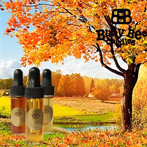 Autumn Glory Fragrance Oil